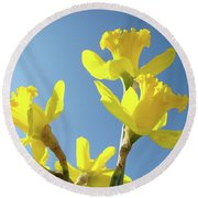 Floral Art Daffodil Flowers Spring Prints Blue Sky Baslee Troutman Round Beach Towel