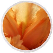 Floral Art Orange Iris Flower Sunlit Baslee Troutman Round Beach Towel