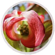 Floral Art Pink Dogwood Flowers Baslee Troutman Round Beach Towel