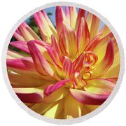 Floral Art Prints Bright Dahlia Flower Canvas Baslee Troutman  Round Beach Towel