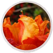 Floral Art Prints Orange Rhodies Rhododendrons Baslee Troutman Round Beach Towel