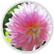 Floral Art Prints Pink Dahlias Sunlit Baslee Troutman Round Beach Towel