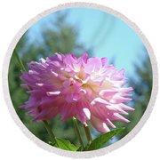 Floral Art Prints Pink White Dahlia Flower Pastel Baslee Troutman Round Beach Towel