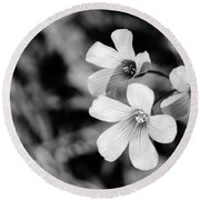 Floral Black And White Round Beach Towel