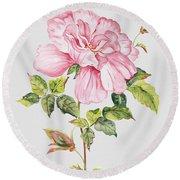 Floral Botanicals-jp3779 Round Beach Towel