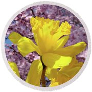 Floral Fine Art Daffodils Art Prints Spring Flowers Sunlit Baslee Troutman Round Beach Towel