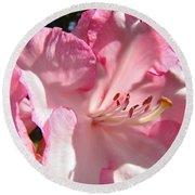 Floral Fine Art Prints Pink Rhodie Flower Baslee Troutman Round Beach Towel