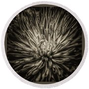 Floral In Sepia 1 Round Beach Towel