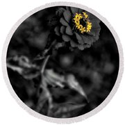 Floral October Zinnia End Of Season Sc 02 Vertical Round Beach Towel
