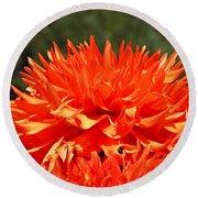 Floral Orange Dahlia Flowers Art Prints Round Beach Towel