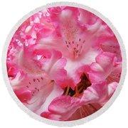Floral Rhodies Flowers Pink White Art Baslee Troutman Round Beach Towel