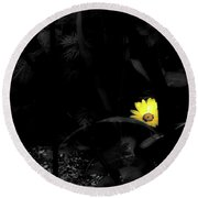 Floral Yellow Peek A Boo Sc Round Beach Towel