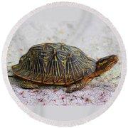 Florida Box Turtle Round Beach Towel