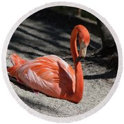 Florida Flamingo Round Beach Towel