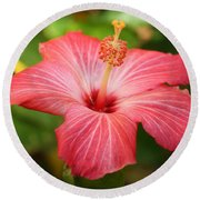 Florida Hibiscus Round Beach Towel