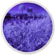 Florida Lagoon In Ir Round Beach Towel