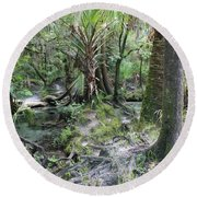 Florida Landscape - Lithia Springs Round Beach Towel by Carol Groenen