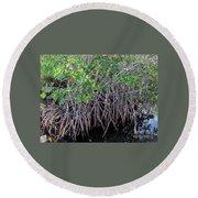 Florida - Mangroves Round Beach Towel