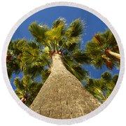 Florida Palms Round Beach Towel