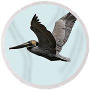 Florida Pelican In Flight Round Beach Towel