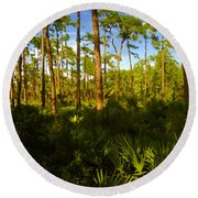 Florida Pine Forest Round Beach Towel