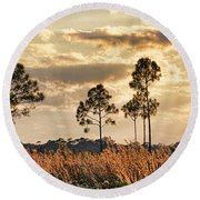 Florida Pine Landscape By H H Photography Of Florida Round Beach Towel