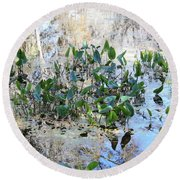 Florida Pond Round Beach Towel