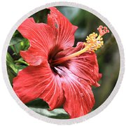 Florida Red Round Beach Towel