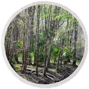 Florida Riverbank  Round Beach Towel