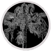 Florida Thatch Palm In Black And White Round Beach Towel
