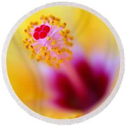 Flower - Stamen 2 Round Beach Towel