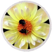 Flower And Bees Round Beach Towel