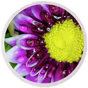 Flower And Droplets Round Beach Towel