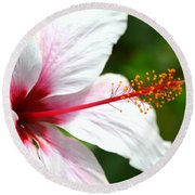 Flower Beauty Round Beach Towel by Riad Belhimer