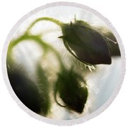 Flower Buds Abstract Round Beach Towel