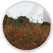 Flower Field In Hama-rikyu Gardens Round Beach Towel