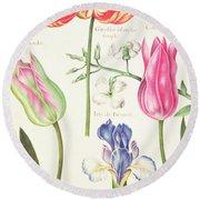 Flower Studies  Tulips And Blue Iris  Round Beach Towel
