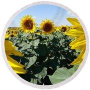 Flower Sunflower,yellow Flower, Round Beach Towel