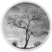 Trees Are Talking To Us Round Beach Towel
