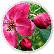 Flowering Crab Apple Round Beach Towel