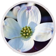 Flowering Dogwood Round Beach Towel