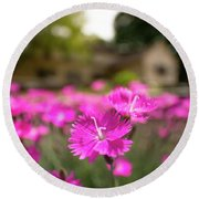 Flowering In The Front Round Beach Towel