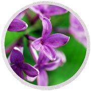 Flowering Lilac Round Beach Towel