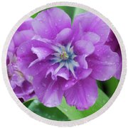 Flowering Purple Tulips With Raindrops From A Spring Rain Round Beach Towel