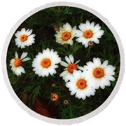 Flowering Yew Round Beach Towel