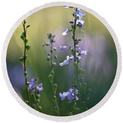 Flowers By The Pond Round Beach Towel