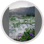 Flowers Of Ocotilla Round Beach Towel