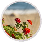 Flowers Of Rhodes Round Beach Towel
