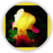Flowers Of The Universe Round Beach Towel