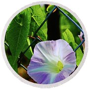 Flowers On The Fence 1 Round Beach Towel